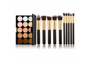15 Colors Concealer Camouflage Makeup Palette & 10pcs Makeup Brush Kit for Cosmetic (CM-2806)